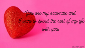 You are my soulmate and I want to spend the rest of my life with you.